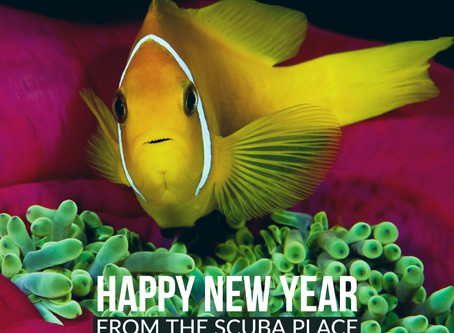 Happy New Year from The Scuba Place