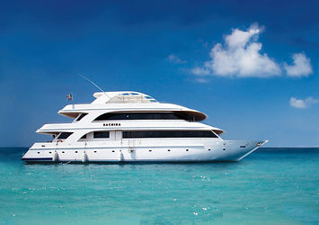 The Sachika liveaboard is one of our favourites, sizeable, luxurious and beautiful. Comfort is key on this boat.