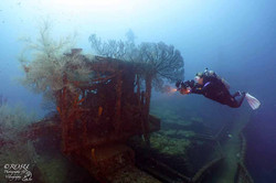 Grenada - Shakem wreck