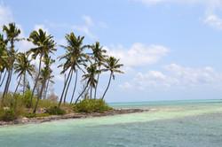 Andros Bahamas