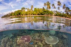 Dumaguete : Atmosphere Resort house reef