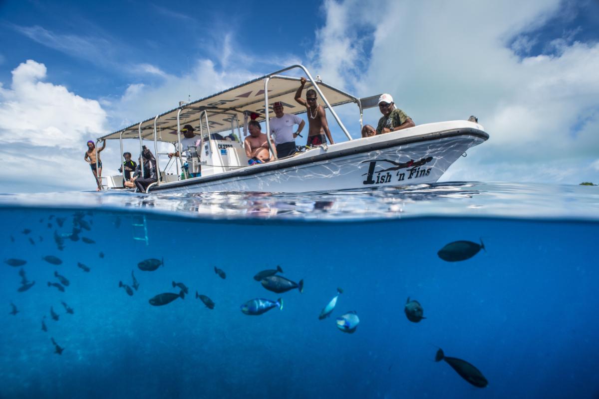 palau : fishnfins boat