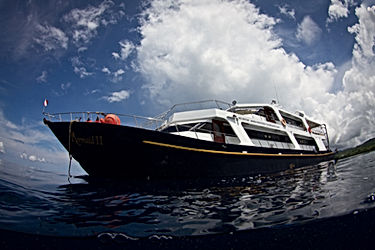The Mermaid II is another amazing liveaboard we have to offer in Indonesia. A pretty boat with features to enhance your enjoyment on trips.