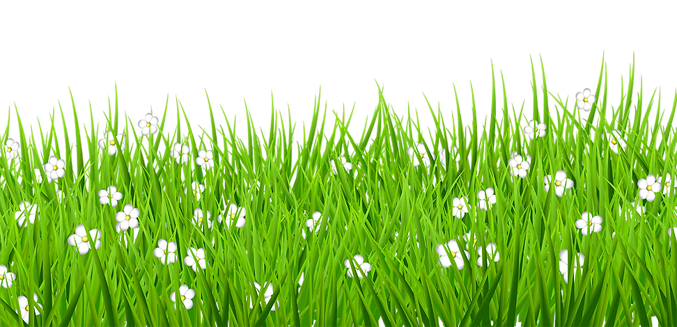 grass_アフタースクール.png