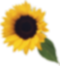 flower_教室.png