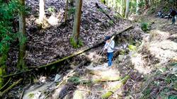 Site Study of Hieizan #05