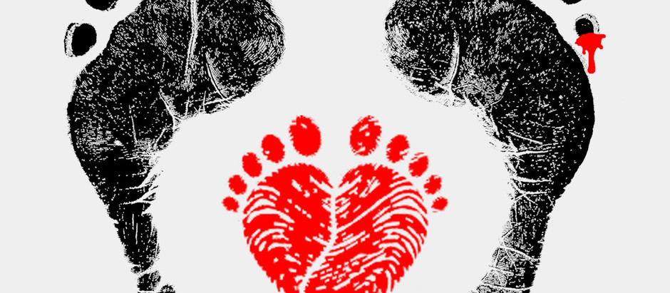 Top Reviews for Footprint: Live, Love, Lead