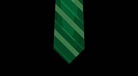 Green Tie Ramaswamy