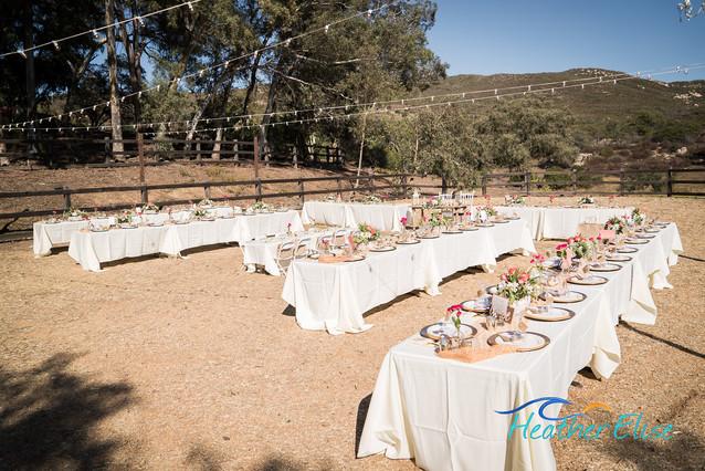 Bradford Ranch Wedding (280 of 819)-X2.j