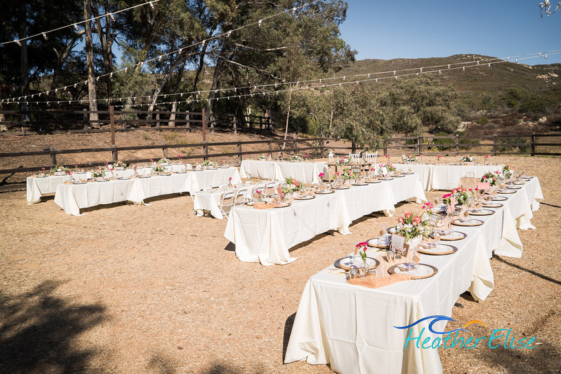Bradford Ranch Wedding (280 of 819)-X2.j