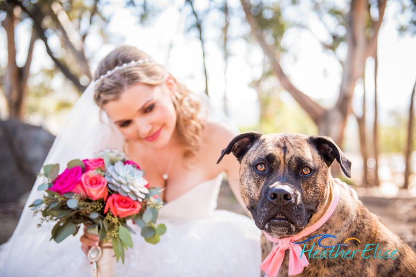 Bradford Ranch Wedding (295 of 819)-X2.j