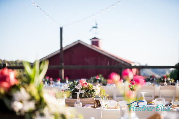 Bradford Ranch Wedding (527 of 819)-X2.j