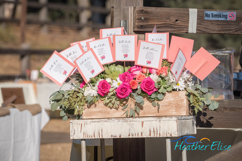 Bradford Ranch Wedding (413 of 819)-X2.j