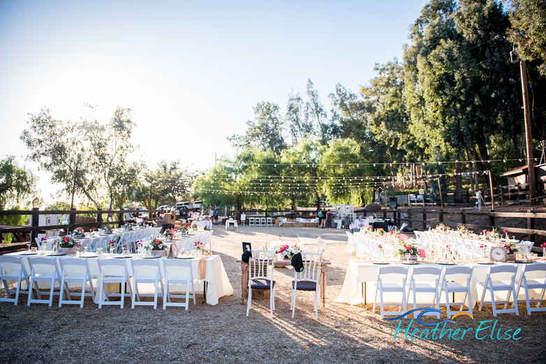 Bradford Ranch Wedding (534 of 819)-X2.j