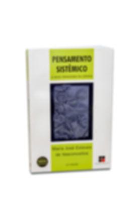 Livro_Pensamento-Sistemico.jpg