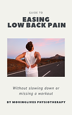 Low back pain cover.png