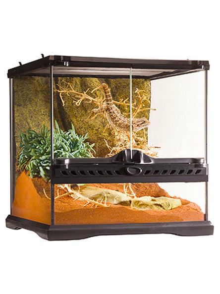 Glass Terrarium Mini Wide
