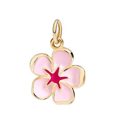 Fiore di ciliegio rosa - Sei la più bella