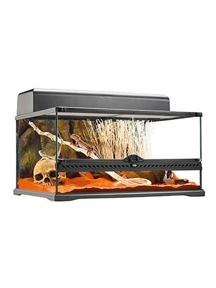 Glass Terrarium Medium Low