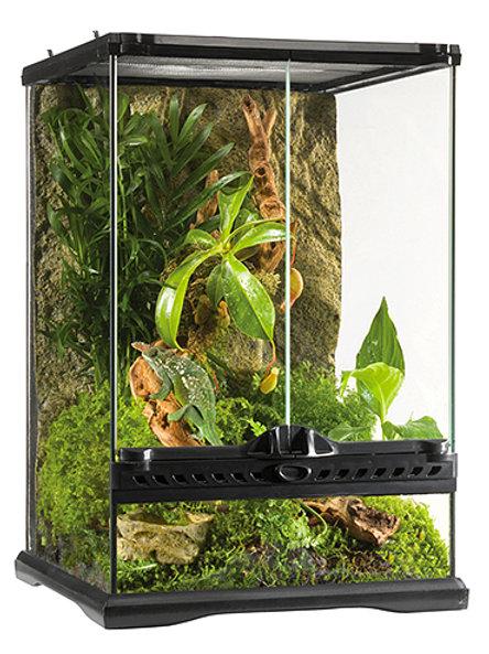 Glass Terrarium Mini Tall