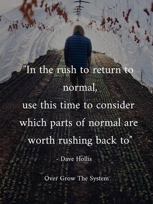 rush-to-normal.jpg