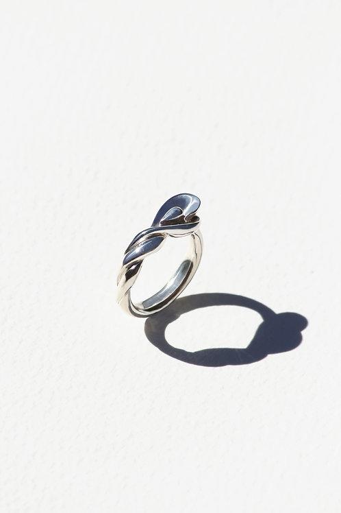 Pavo Ring