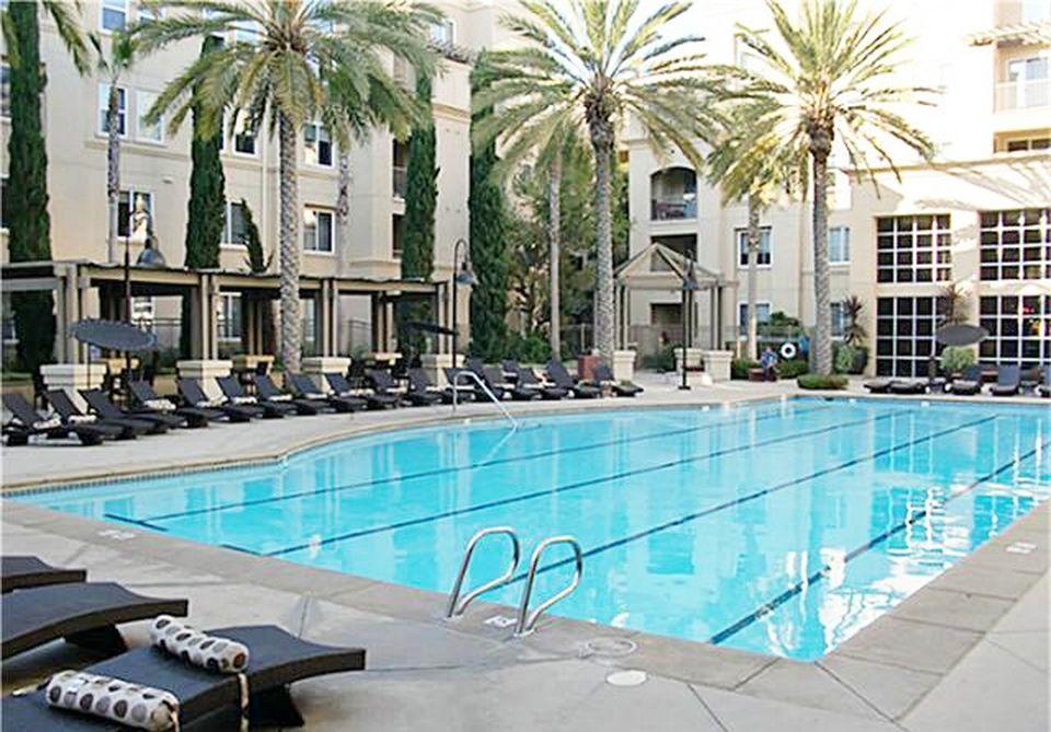 Community Oylmpic Size Swimming Pool