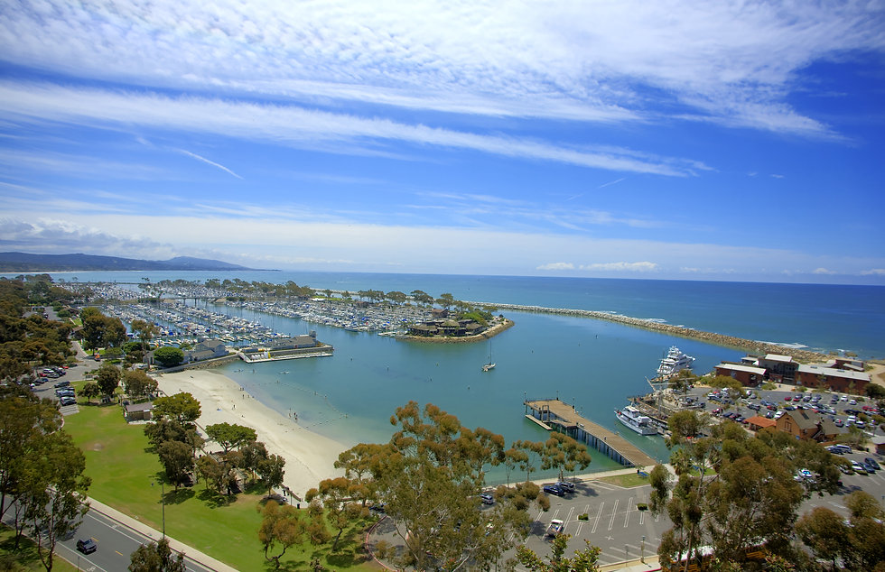 Dana Point Luxury Real Estate