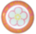 1955 Button