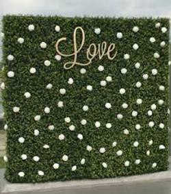 Love Hedge Wall