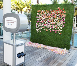 Traditional Photo Booth hedge wall