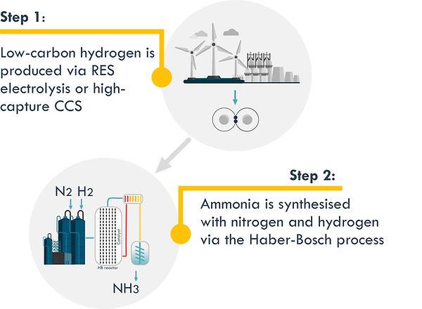 Ammonia production low carbon H2.jpg