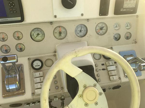 Cruiser 3.jpg