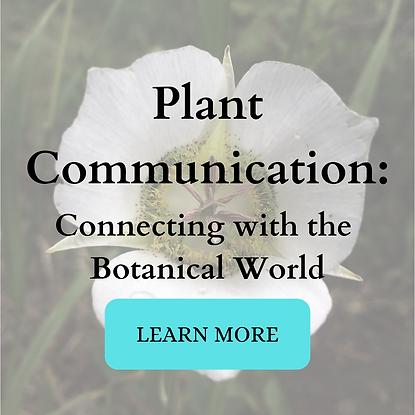 Plant Communication w_ button.png