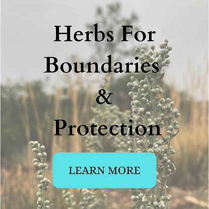 w: button Herbs for Boundaries & Protect