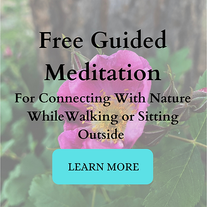 Connecting Meditation.png