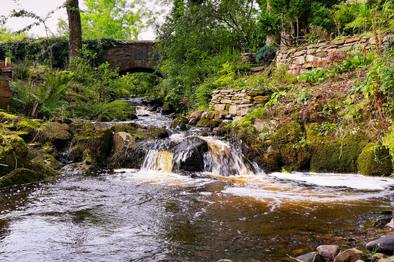 Dalswinton MIll
