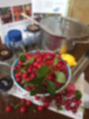 Fruits and Labours.jpg
