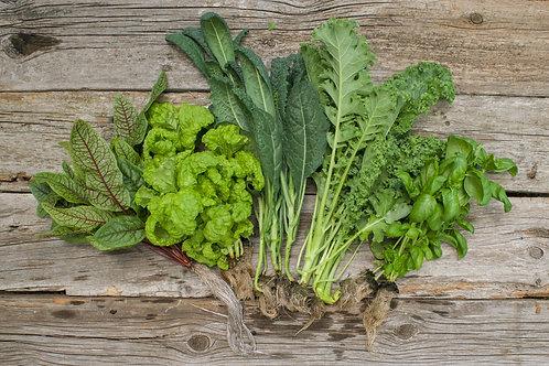 Leafy Greens Box (25 oz)