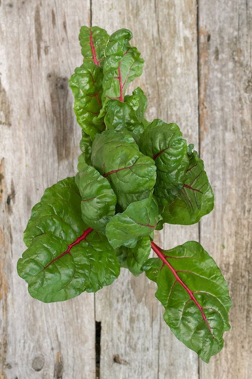 Red and Yellow Chard (9 oz)