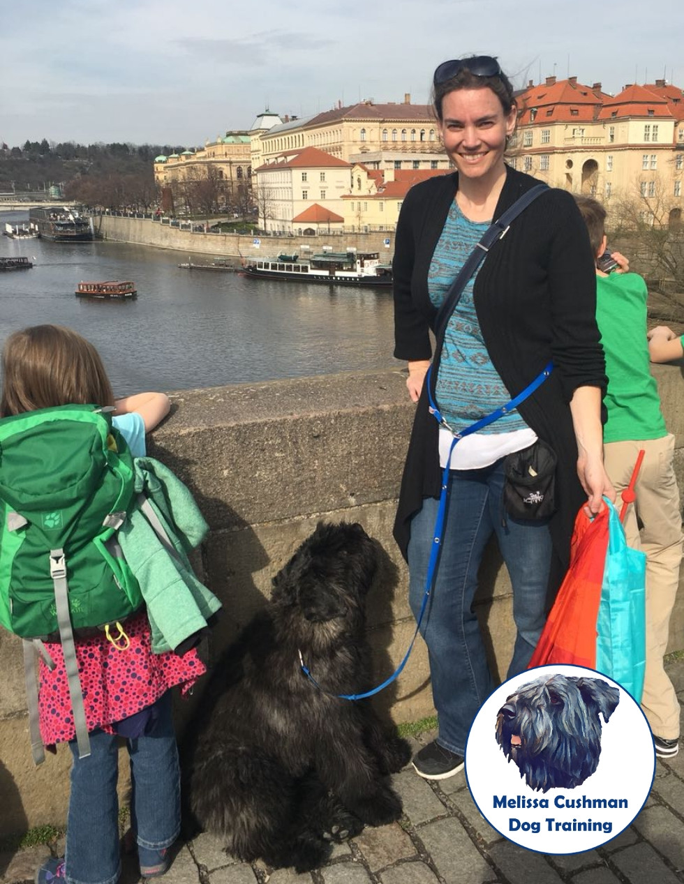 Melissa Cushman and Gunther a Bouvier des Flandres puppy traveling in Europe