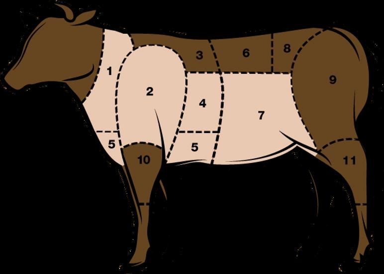 Fleischkunde_Siedfleisch.png