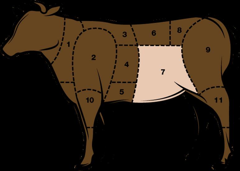 Fleischkunde_Lempen.png