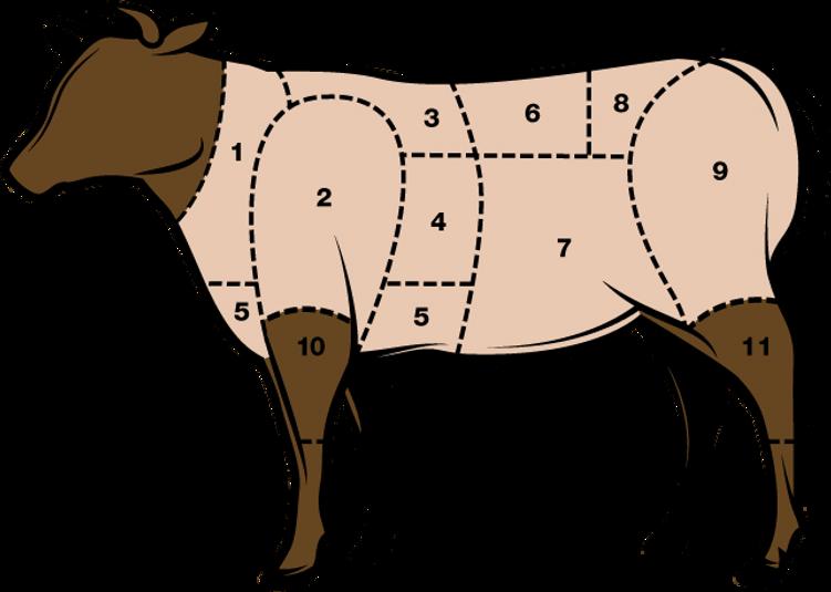 Fleischkunde_Hackfleisch.png
