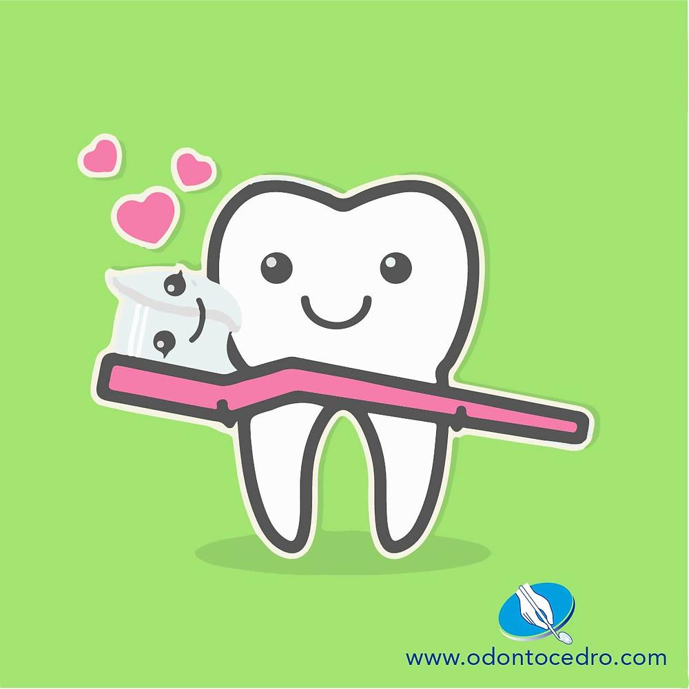 Como cepillarse los dientes, Salud Oral