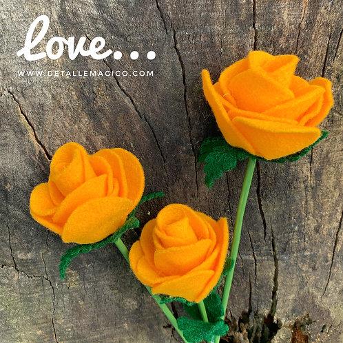 Flores | Rosa de la Alegría