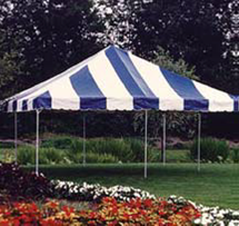 Blue/White Tent