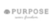Purpose 2.png