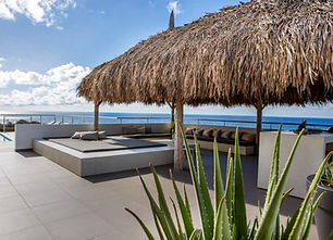 5W1A3889-Foto-Lau-Curacao-gentil-292.jpg