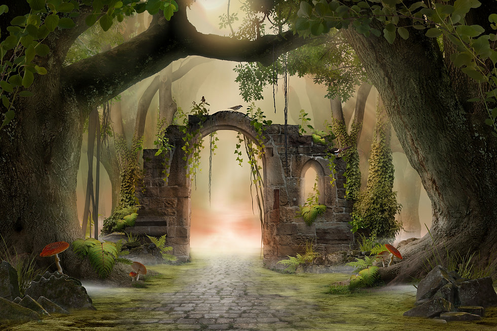 Archway in an enchanted fairy forest lan